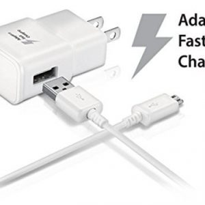 Fast Chargers